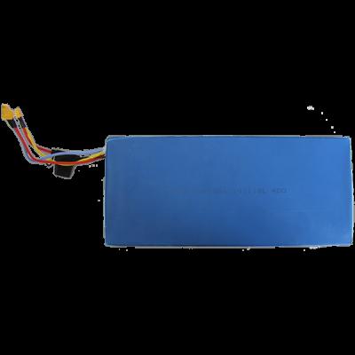 Аккумулятор 48V 13A HALTEN RS-01 v.2