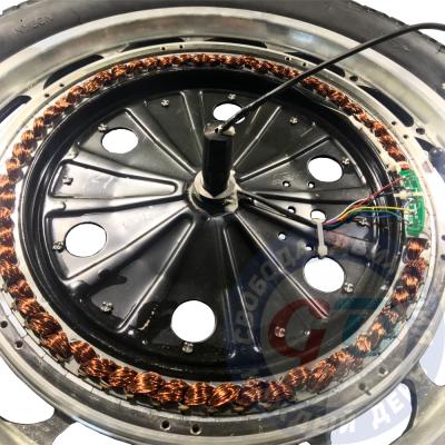 Ремонт мотора моноколеса